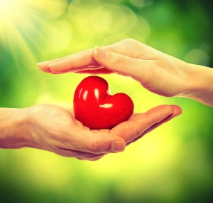Valentine Heart in Man and Woman Hands over Nature Green Sunny B